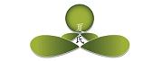 夏氏静坐法(Xia's Meditation)- 中国传统养生专家